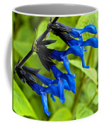 Black And Blue Salvia Coffee Mug