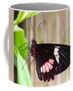 Black And Red Cattleheart Butterfly Coffee Mug