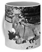 Black And White Burro  Coffee Mug