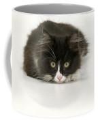 Black-and-white Cat Coffee Mug