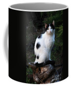 Black And White Cat On Tree Stump Coffee Mug