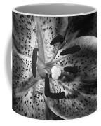 Black And White Lily Up Close Coffee Mug