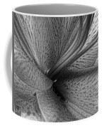 Black And White Lily Z Map L Coffee Mug