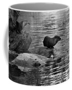 Black And White Otters In The Wild Coffee Mug