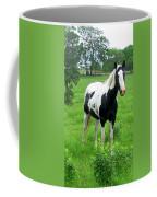 Black And White Paint Horse Coffee Mug