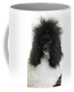 Black And White Poodle Coffee Mug