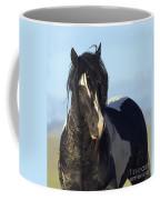 Black And White Stallion Comes Close Coffee Mug