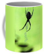 Black And Yellow Argiope - Spider Silhouette 02 Coffee Mug