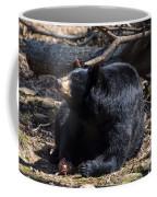Black Bear Guarding Food Coffee Mug