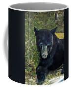 Bear Painting - Scruffy - Profile Cropped Coffee Mug
