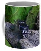 Black Beetle Coffee Mug
