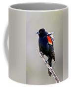 Black Bird Coffee Mug by Athena Mckinzie