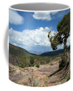 Black Canyon Juniper Coffee Mug