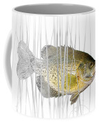 Black Crappie Pan Fish In The Reeds Coffee Mug
