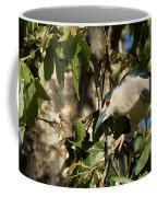 Black-crowned Heron Looking For Nesting Material Coffee Mug