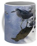 Black Crowned Night Heron And Shadow Coffee Mug