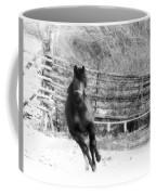 Black Diamond Jubilee 2 Coffee Mug