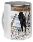 Black Diamond Jubilee 3 Coffee Mug