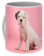 Black Eared White Boxer Puppy Coffee Mug by Mark Taylor