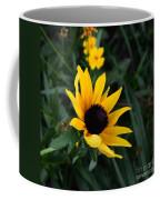 Black-eyed Susan Glows With Cheer Coffee Mug