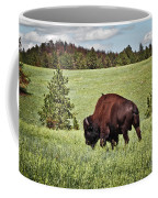 Black Hills Bull Bison Coffee Mug by Robert Frederick