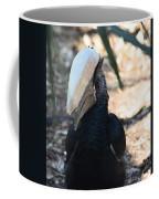 Black Hornbill Coffee Mug