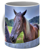 Black Horse At A Fence Coffee Mug