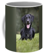 Black Labrador Dog Coffee Mug