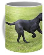Black Labrador Playing Coffee Mug