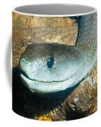 Black Mamba Coffee Mug