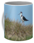 Black-necked Stilt Coffee Mug