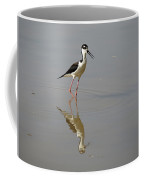 Black-necked Stilt Coffee Mug