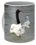 Black Necked Swan Patagonia  Coffee Mug