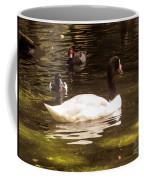 Black-necked Swan Coffee Mug