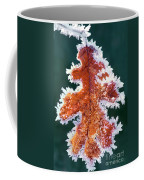 Black Oak Leaf Rime Ice Yosemite National Park California Coffee Mug