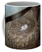 Black Phoebe Nest With Eggs Coffee Mug