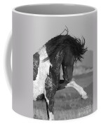 Black Pinto Stallion Strikes Out Coffee Mug