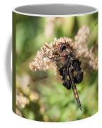 Black Saddlebags Dragonfly At Rest Coffee Mug