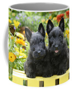 Black Scotties Coffee Mug