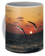Black Skimmers At Sunset Coffee Mug