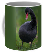 Black Swan Series - 1 Coffee Mug