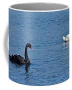 Black Swan White Swan Coffee Mug
