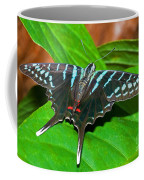 Black Swordtail Butterfly Coffee Mug