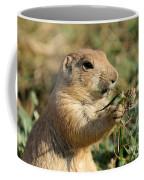 Black-tailed Prairie Dog Coffee Mug