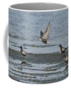 Black Terns Coffee Mug