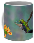 Black-throated Brilliant Coffee Mug