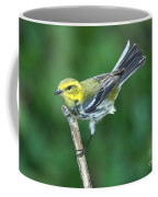 Black-throated Green Warbler, Female Coffee Mug
