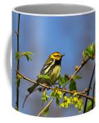 Black-throated Green Warbler Coffee Mug