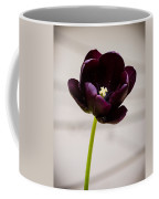 Black Tulip Coffee Mug