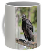 Black Vulture On The Boardwalk Coffee Mug